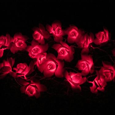Solar Rose String fény